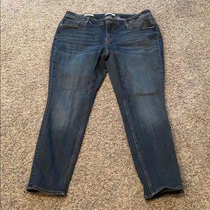 EUC Vigoss skinny jeans